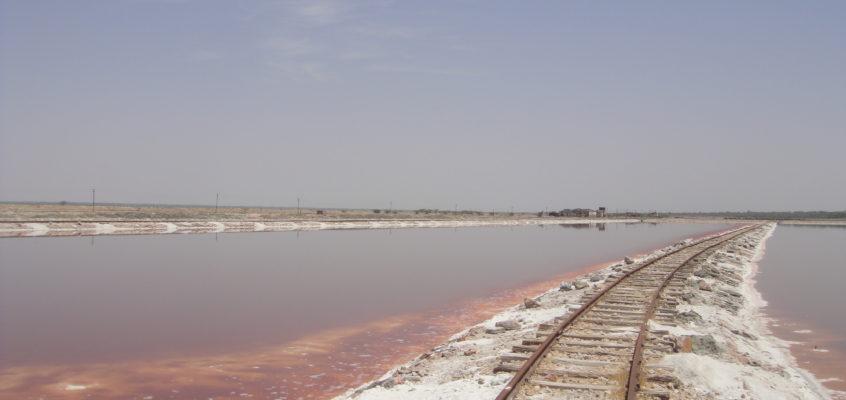 Sambhar Lake : Worth the Salt
